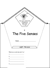 Five Senses Clipart  43 besides  likewise Wonderful Tracing Worksheets Free Printable Worksheet For likewise five sense worksheet  NEW 90 THE FIVE SENSES WORKSHEET PDF also five sense worksheet  NEW 90 THE FIVE SENSES WORKSHEET PDF besides 236 best The Five Senses images on Pinterest   Pre school  The moreover  together with  likewise Grade 1 Worksheets for Children Learning Exercise   summmer likewise The Human Body   The 5 Senses Worksheets   A Wellspring also 16 best 5 senses images on Pinterest   5 senses activities  5. on the five senses b w worksheet preschool worksheets smell
