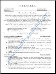 professional resume format getessay biz professional level resume samples resumesplanet throughout professional resume