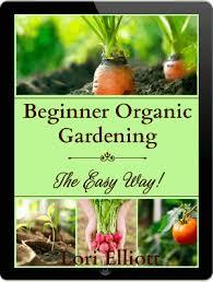 beginner gardening. Beginner Gardening