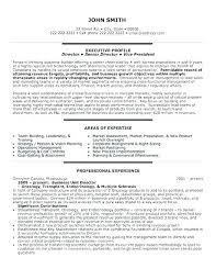 Business Analyst Resume Samples Supply Chain Sample Executive