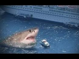 real megalodon shark sightings pictures. Brilliant Sightings Real Megalodon Biggest Shark Ever Proofs Genuine Sightings  Megalodons Are Worldu0027s Largest Sharks Ever These Giant Sea Monsters Didnu0027t Go  To Pictures