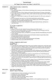 Global Marketing Resume Samples Velvet Jobs