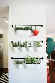 ikea hanging herbs home decorating