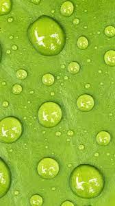 Water Drop Green Macro 4K Ultra HD ...