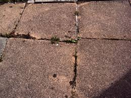 32 can you paint patio slabs paving slabs s looking for paving slabs or patio timaylenphotography com