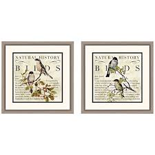 botanical birds 18 square 2 piece framed wall art set on 2 piece framed wall art with botanical birds 18 square 2 piece framed wall art set 12n97