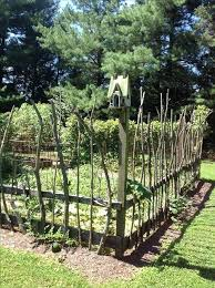 stick fence vegetable garden with stick fencing awesome at keeping deer at bay rabbit houses outdoor stick fence home depot