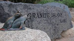 """granite island penguins""的图片搜索结果"