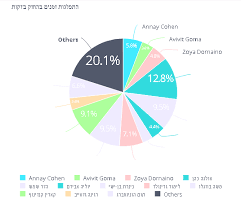 Missing Hebrew Labels In Pie Charts In Sisense V7 02