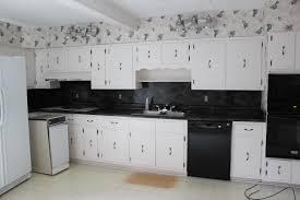 Retro Renovation Kitchen Retro Renovation Painting The Kitchen Cabinets Noogacom