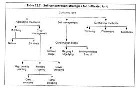 essay on soil erosion environment soil conservation strategies for cultivated land