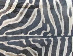 zebra skin rug x real with felt backing you are ing australia