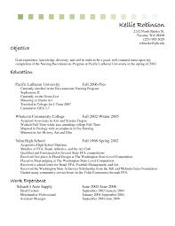 Resume Objective Examples For Cashier Svoboda2 Com