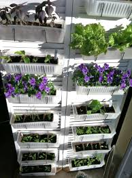 Kitchen Garden Seeds Diy Vertical Kitchen Garden Seed Starting Trays Single