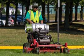 year round lawn care tips lawn care during drought