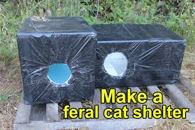 make a feral cat shelter from a styrofoam cooler lined with high density styrofoam