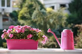Small Picture Garden Design Garden Design with Small Balcony Garden on