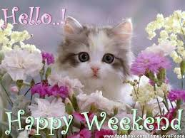 Image result for happy weekend quotes