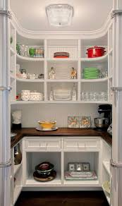 Modern Kitchen Pantry Designs Decorations Easy Small White Kitchen Pantry Decor Near Modern