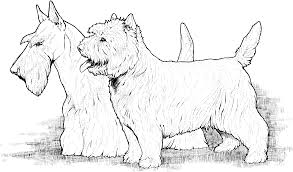 Small Picture Dog Breed Coloring Pages
