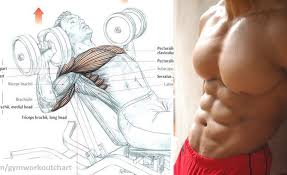 4 things you can do to improve your chest workout and build a bigger chest