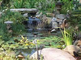 pensacola seed garden landscaping