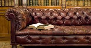 Endearing Leather Conditioner For Sofa Best Ideas About Cleaning