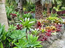 Small Picture 86 best Tropical Garden images on Pinterest Landscaping