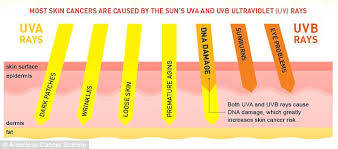 Mole Chart For Skin Cancer Freckles Vs Moles And What They Mean For Your Skin Girlslife