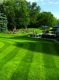 Image For Lawns Best Organic Fertilizer For Lawns How To Choose The Right