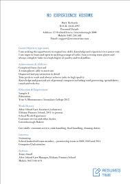 Professional Summary For Resume No Work Experience Entry Level Resume Samples Examples Template To Find The