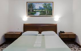 Classic Double Room Alexandros Hotel Drama Hotels Rooms