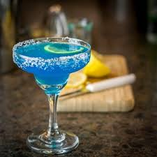 Image result for agave on the rocks
