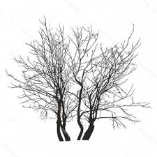 Tree Silhouettes Png Transparent Background Hoodamathrun