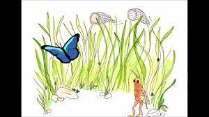Dessin De La Poesie Le Papillon