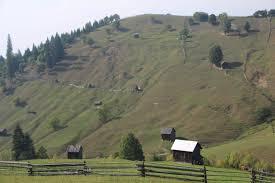 Moldovița