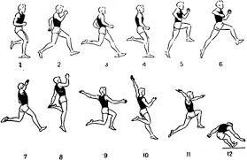 Тренировка по легкой атлетике Техника прыжка в длину с разбега