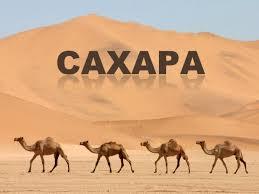 Реферат про пустыню сахару > всё для учеников Реферат про пустыню сахару