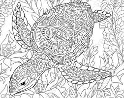 Small Picture 1 Coloring Page of Ocean Crab from ColoringPageExpress Shop Hand