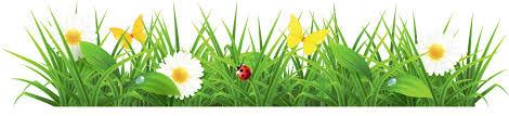 grass and flowers border. Plain Flowers Grass Clipart Spring Flower 6 On And Flowers Border