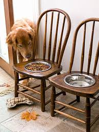 how to repurpose old furniture. Plain Furniture Old Chairs Into Pet Feeding Station Intended How To Repurpose Furniture E