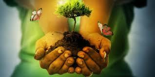 Resultado de imagen para educacion ambiental niños iglesia