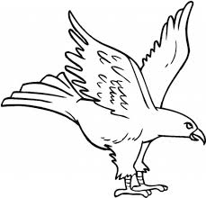 Small Picture Eagle Drawing For Kids Impressive Eagle Coloring Pages Ideas For