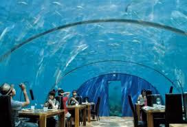 poseidon underwater hotel. Real Poseidon - Makarba Ahmedabad Photos Underwater Hotel