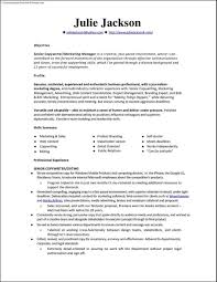 Gallery Of Resume Templates Monster