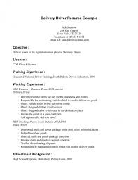 Delivery Driver Resume Skills Objective Job And Pizza Hut Transit In