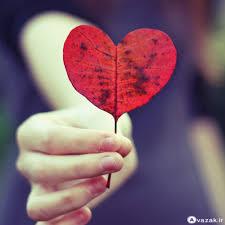 Image result for هر روز روز عشقه