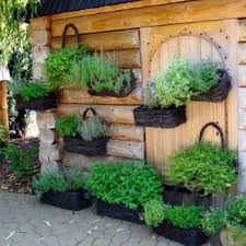 Small Picture 771 best Window Wall Pots images on Pinterest Window boxes