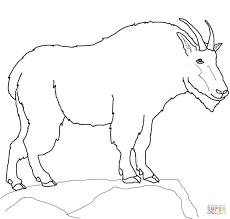 Small Picture Mountain Goat Coloring Page SuperColoring Goat Coloring Page In