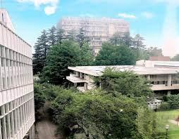 明治 大学 理工 学部